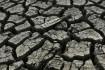 سكان كاليفورنيا يواجهون غرامات بسبب ترشيد المياه