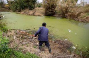 مزارع بجوار نهر ملوث في شنغهاي يوم 21 مارس اذار 2016. تصوير: ألي سونغ - رويترز